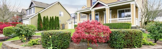 Quick and Easy Fixes to Add Curb Appeal
